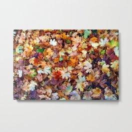 In the sea of leaves Metal Print