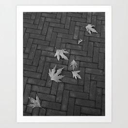 Sidewalk leaves noir Art Print