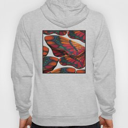 """A thousand colors of butterfly wings"" Hoody"