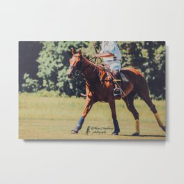 Chestnut Polo Pony Metal Print