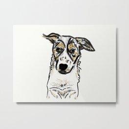 Bindi Australian Cattle Dog Metal Print