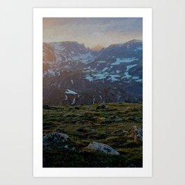 Beartooth Art Print