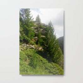 Mountain,pine tree photography  Metal Print