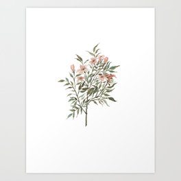 Small Floral Branch Art Print