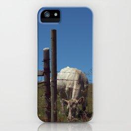 Blue Sky Pastures iPhone Case