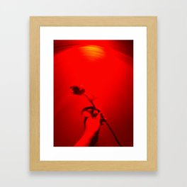 persian rose Framed Art Print