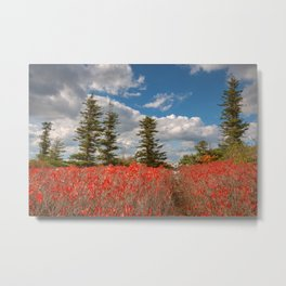 Autumn Huckleberry Wonderland Metal Print