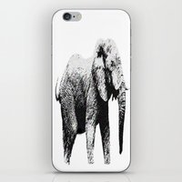 african iPhone & iPod Skins featuring African Elephant by T.E.Perry