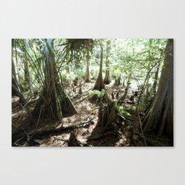Florida Canvas Print
