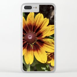 Really Radiant Rudbeckia Clear iPhone Case