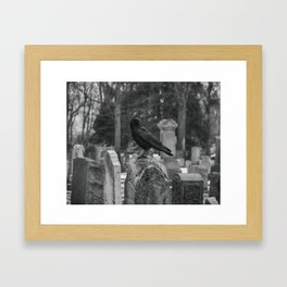 Crow In Shades Of Stone Framed Art Print