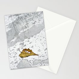 Leaf in Rain Stationery Cards