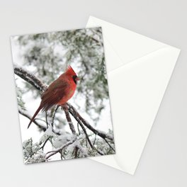 Wet Snow Cardinal (vertical) Stationery Cards