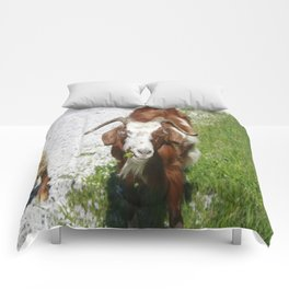 Whimsical Portrait of a Horned Goat Grazing Comforters