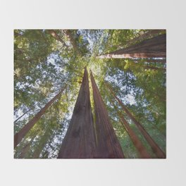 California Redwoods Throw Blanket