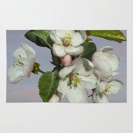 Spade's Apple Blossoms Rug