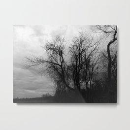 When Nature Goes Horror Movie Photograph Metal Print