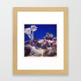 Academy of Sciences 1 Framed Art Print