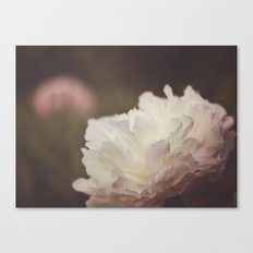 White and Pink Peonies Canvas Print