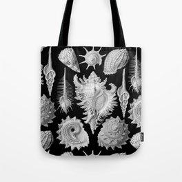 Black and White Beach Shells Tote Bag