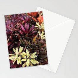 Hawaii Flowers Stationery Cards