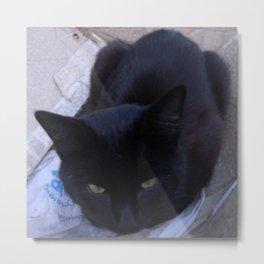 Jinx in the Box Metal Print