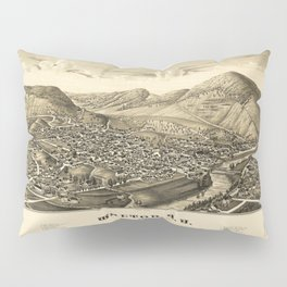 Aerial View of Walton, New York (1887) Pillow Sham