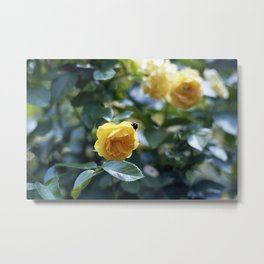 untitled flower #3 Metal Print