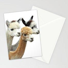 Alpaca Trio Stationery Cards