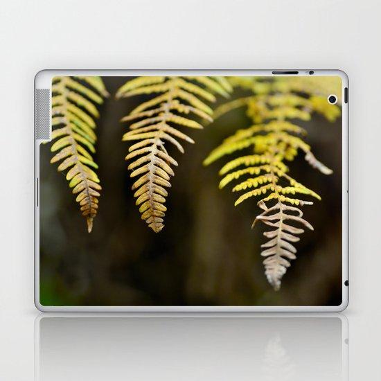 three ferns Laptop & iPad Skin