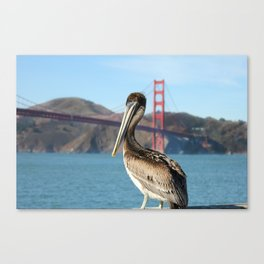 Pelican Perch Under the Golden Gate Canvas Print