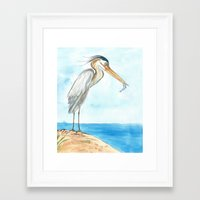 harry Framed Art Prints featuring Harry by Catherine Holcombe