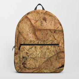 Kuma Sutra Backpack