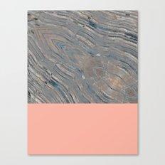 Agate Flamingo Canvas Print
