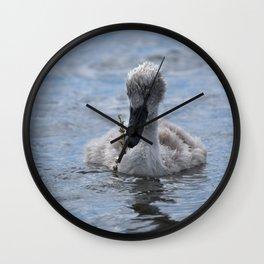 Cygnet Wall Clock