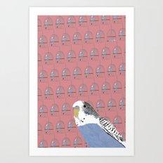 The Budgie Gallery Giftshop Art Print