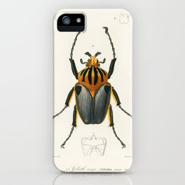 Goliathus cacicus illustrated by Charles Dessalines D' Orbigny (1806-1876). iPhone Case