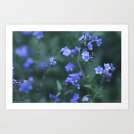 please forget me not... Art Print
