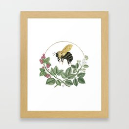 Bombus & Raspberries Framed Art Print