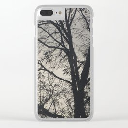 The Barren Tree Clear iPhone Case