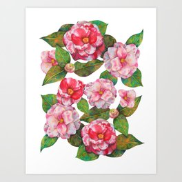 Royal Camellia - RBG Art Print
