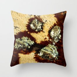 BUTTERFLY MAGNIFIED - ANTEROS FOMOSUS Throw Pillow