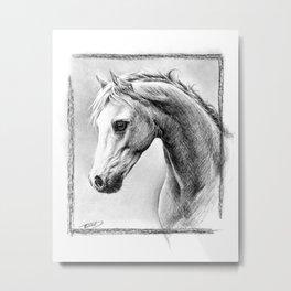 Horse 1 Metal Print