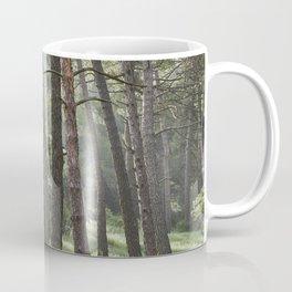 Spring forest. Foggy sunrise Coffee Mug