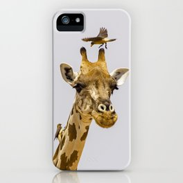 Perch of the Wild iPhone Case