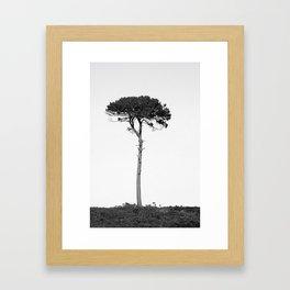 Nature in black and white Framed Art Print