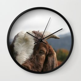 Look who's complaining, funny goat photo Wall Clock