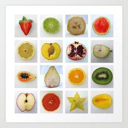 Fruit Typology Art Print