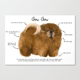 C is for Chow Chow Canvas Print