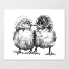 Baby Chicks - Little Kiss G133 Canvas Print